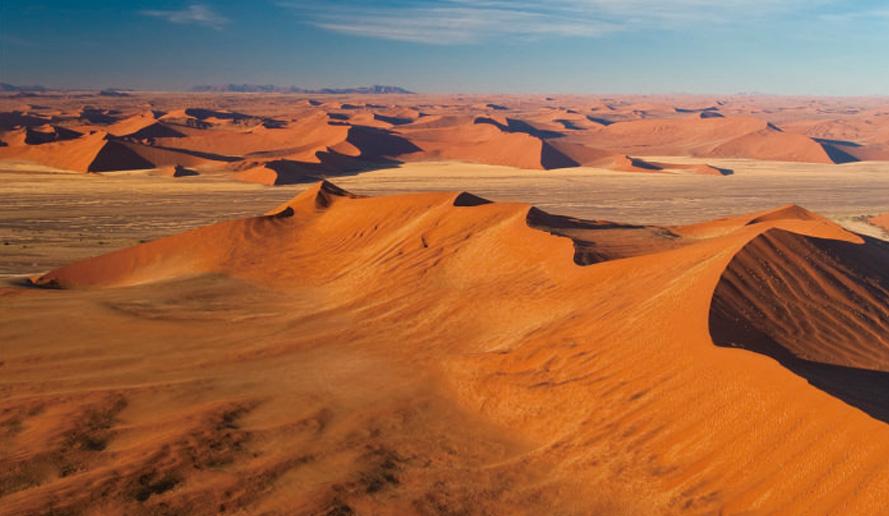ナミブ砂漠の画像 p1_3