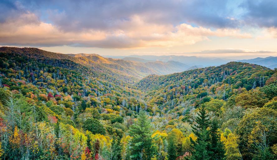 グレート・スモーキー山脈国立公園