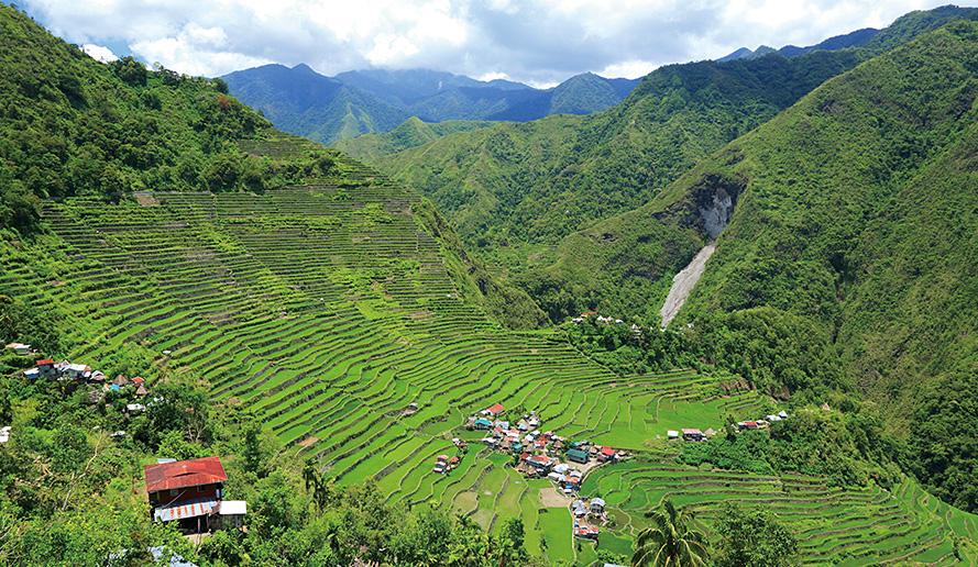世界遺産 フィリピン・コルディリェーラの棚田群