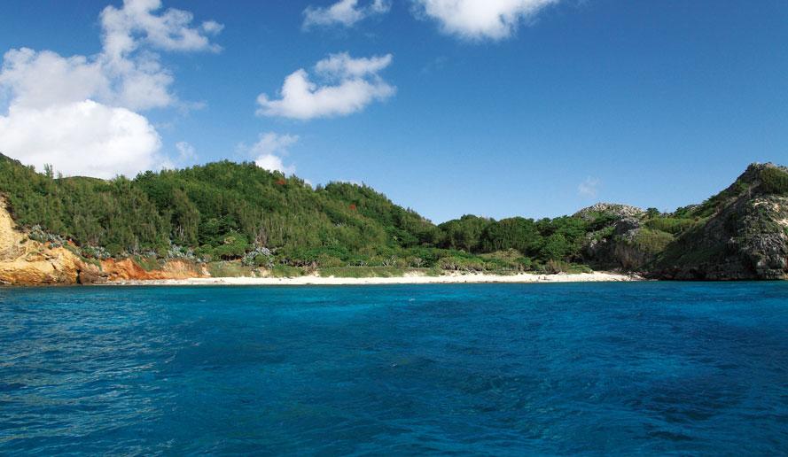 小笠原諸島の画像 p1_20