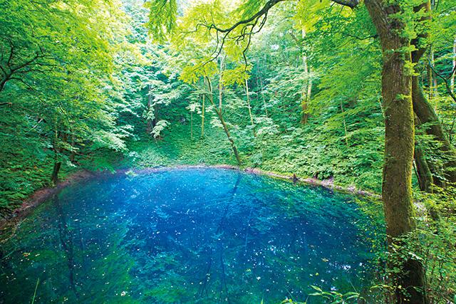 日本 遺産 世界 自然