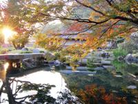 桜島 仙巌園 秋