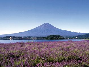 河口湖 山中湖 富士五湖